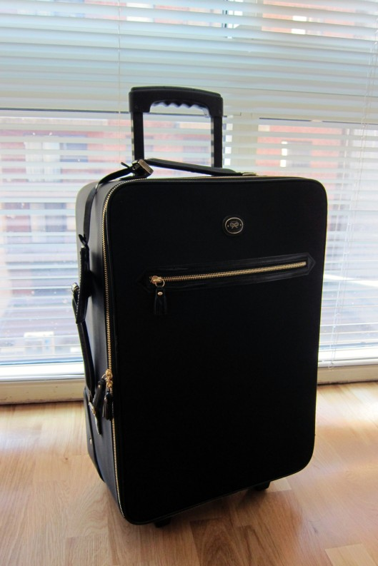 anya hindmarch suitcase