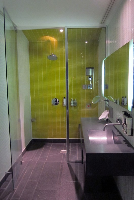 virgin atlantic shower 1