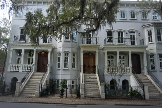 Savannah 7
